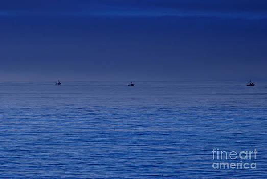 Three Fishers by Stephanie Haertling