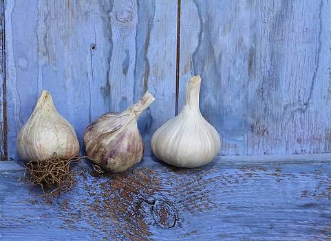 Three Garlic On Blue by Emma Manners