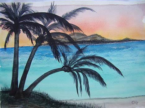 Three Palm Sunset by Chip Picott