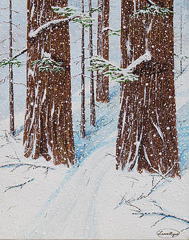 Three Redwoods in Snow by L J Oakes