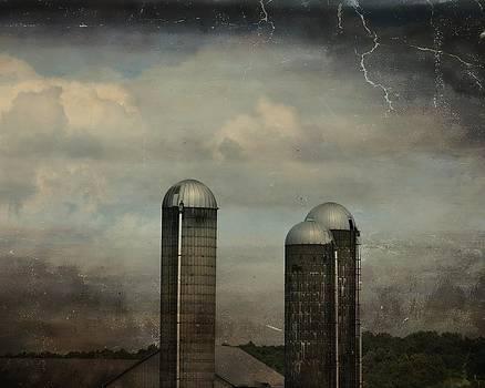 Gothicolors Donna Snyder - Three Silos