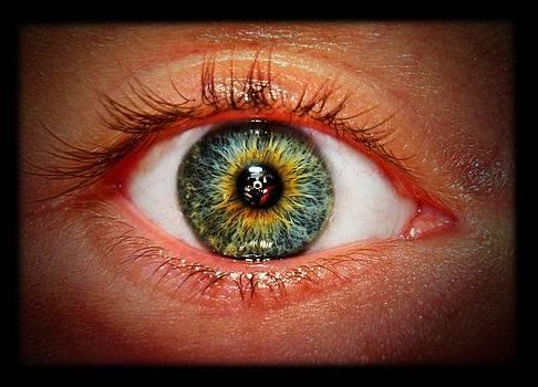 Through My Eyes by Peter Berdan