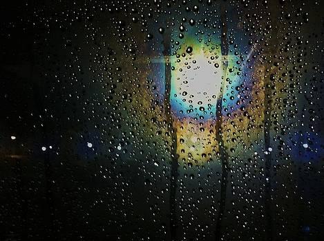 Through My Window by Anna Villarreal Garbis