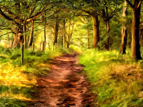 Through the Forest by Michael Pickett