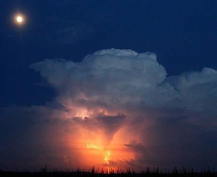 Thunder Bolts And Moon Beams by David  Jones