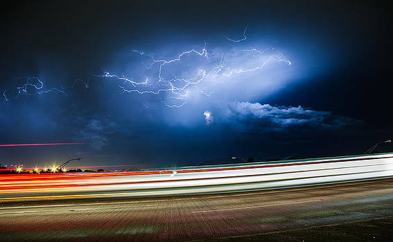 Thunderbird by Joseph Mills