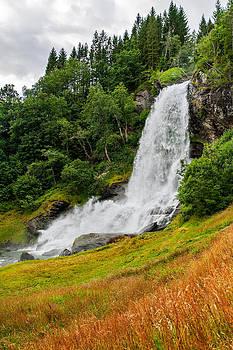 Thunderous Waterfall by Kay Price