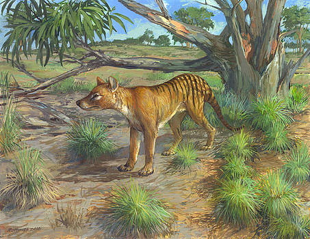 Thylacine Wolf by ACE Coinage painting by Michael Rothman