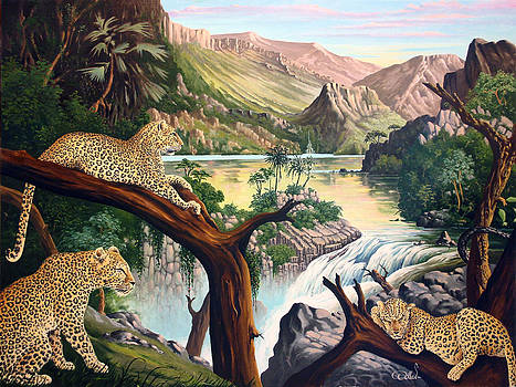 TIA this is Africa by Hans Doller