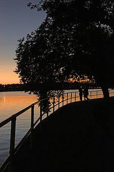 Carolyn Stagger Cokley - Tidal Basin Sunset0259