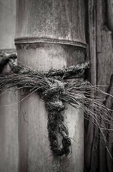 Tied by Lynn Wohlers