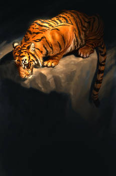 Tiger 5 by Aaron Blaise