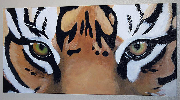 Tiger Eyes by Joshua Jacobs