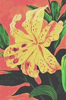 Tiger Lily by SophiaArt Gallery