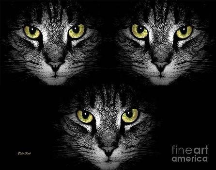 Dale   Ford - Tiger Tiger Times Three