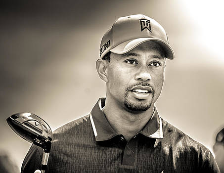 Tiger Woods by Brent Roberts