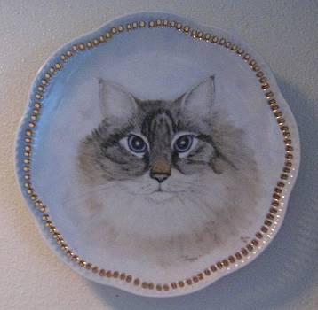 Tigger the Kat by Sandra Maddox