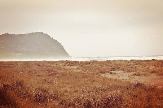Tillamook Head by Cathie Tyler