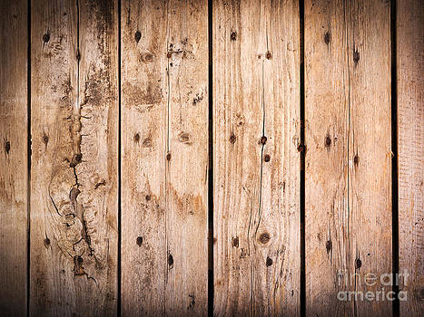 Tim Hester - Timber Background