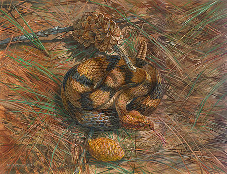 Timber Rattlesnake by ACE Coinage painting by Michael Rothman