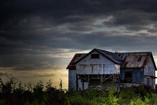 Tin Building by Melodie Douglas