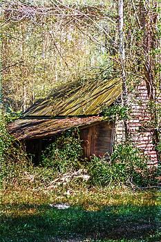 Judy Hall-Folde - Tin Roof Rusted