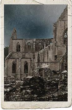 Liz  Alderdice - Tintern Abbey - colour version