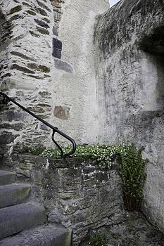 Teresa Mucha - Tiny Corner Garden at Marksburg Castle