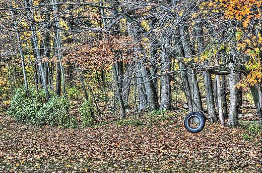 Tire Swing by Duncan  Way