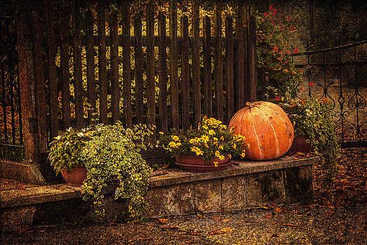 To Autumn by Vjekoslav Antic
