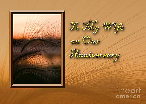 Jeanette K - To My Wife on Our Anniversary Grass Sunset