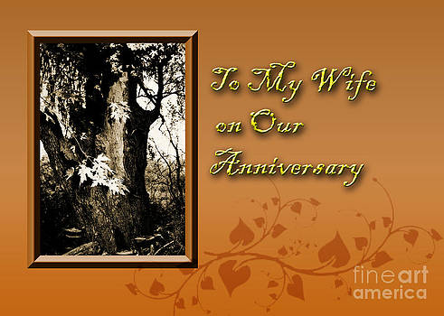 Jeanette K - To My Wife on Our Anniversary Willow Tree