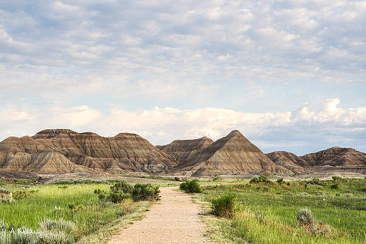 Toadstool Park - Badlands of Nebraska by Andrea Kelley