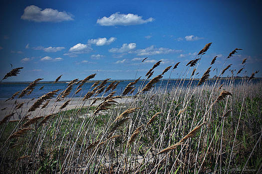 Tobay Beach LI by Mikki Cucuzzo