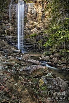 Toccoa Falls by Linda Blair