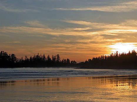 Tofino Winter Sunset by Don F  Bradford