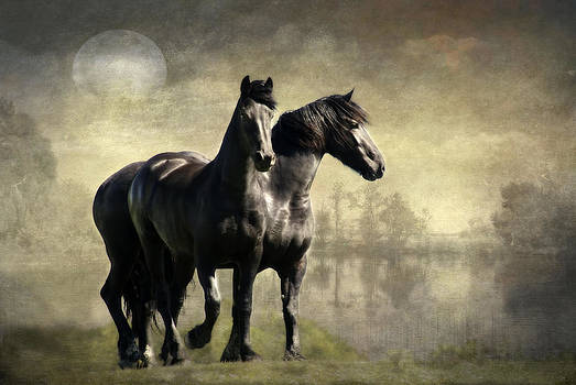 Together by Annie  Snel