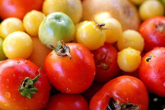 Tomatoes by Diana Shay Diehl