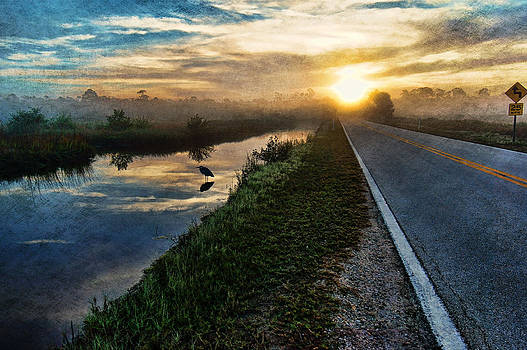 Tomoka Sunrise by Andrew Armstrong  -  Mad Lab Images