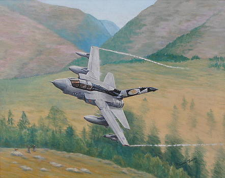Tornado GR4 - Shiny Two Flying Low by Elaine Jones