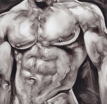 Torso Study by Rudy Nagel