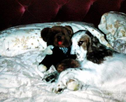 Tosh and Teddy by Julie Dunkley