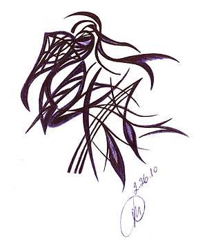 Toucan by Olasha Maxwell