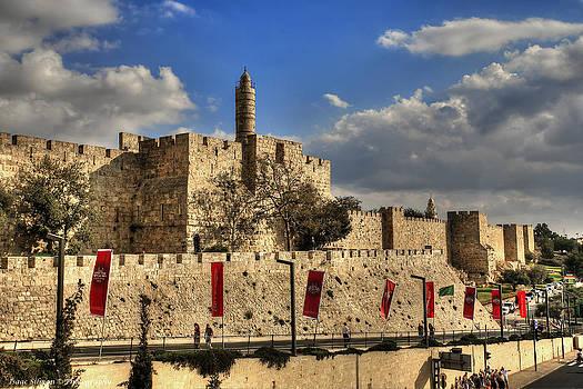 Isaac Silman - Tower of David