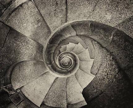 Tower Stairs by Jack Daulton