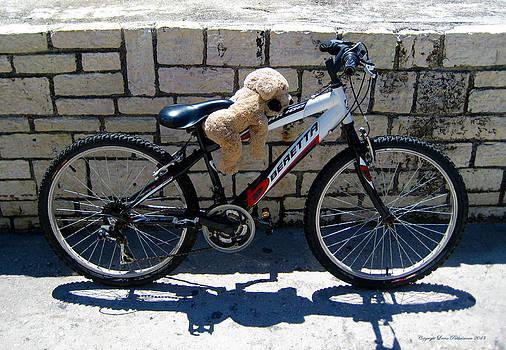 Toy Dog on a Bike by Leena Pekkalainen