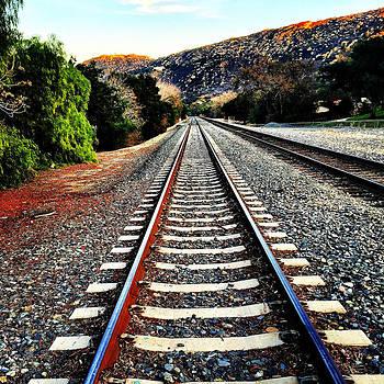 Tracks by Barry Shereshevsky