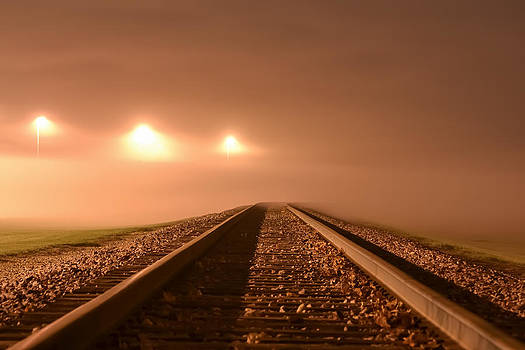 Tracks into the Fog by Robert Painter