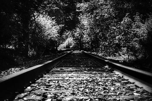 Tracks by Stephanie Haertling