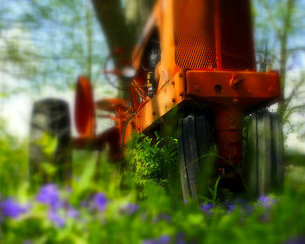 Tractor In The Weeds by Randy  Shellenbarger